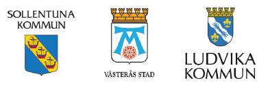 Metod för systematisk kvalitetsuppföljning av våld i nära relationer framtagen av Västerås stad, Ludvika och Sollentuna kommun i samarbete med Diosentic Systems AB.